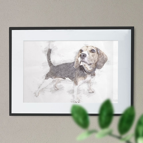 Pencil Drawing of a Beagle Soft Coloured Effect Wall Art Print