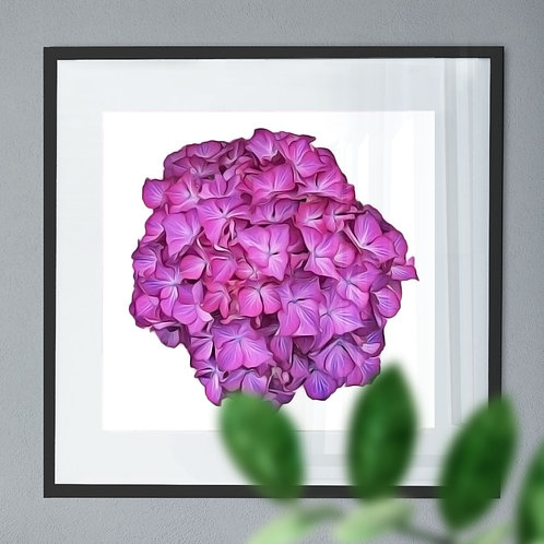 Oil Painting Wall Art Print of a Pink Hydrangea