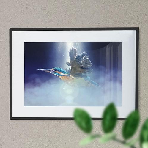 Stunning Kingfisher in Flight - Digital Wall Art Print