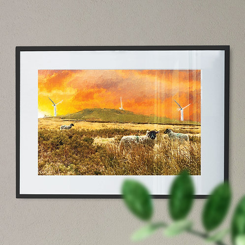 Sheep at Knowl Hill Wall Art Print - Rochdale Oil Painting Effect