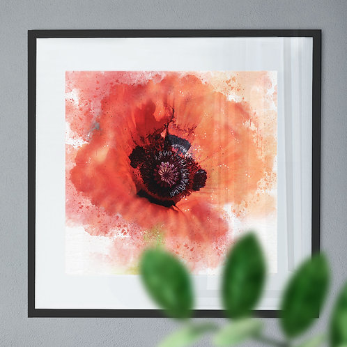 Watercolour Explosion Wall Art Print of a Red Poppy Flower