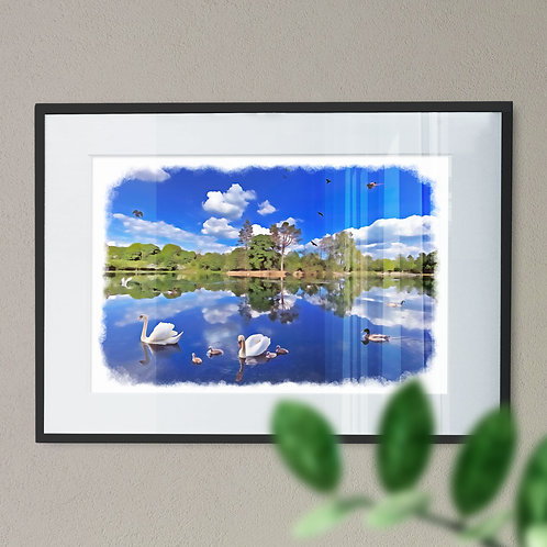 Oil Paint Effect - Wall Art Print of Swans at Queens Park, Heywood Rochdale