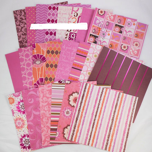 DCWV Haute Pink 6x6 SAMPLER Pack 22 designs 10 are Foiled scrapbooking