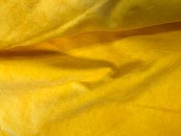 Daffodil Velveteen