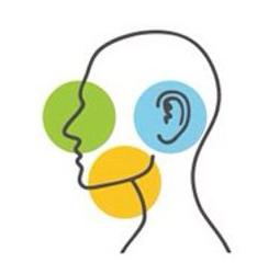 Consulta Otorrinolaringológica Online