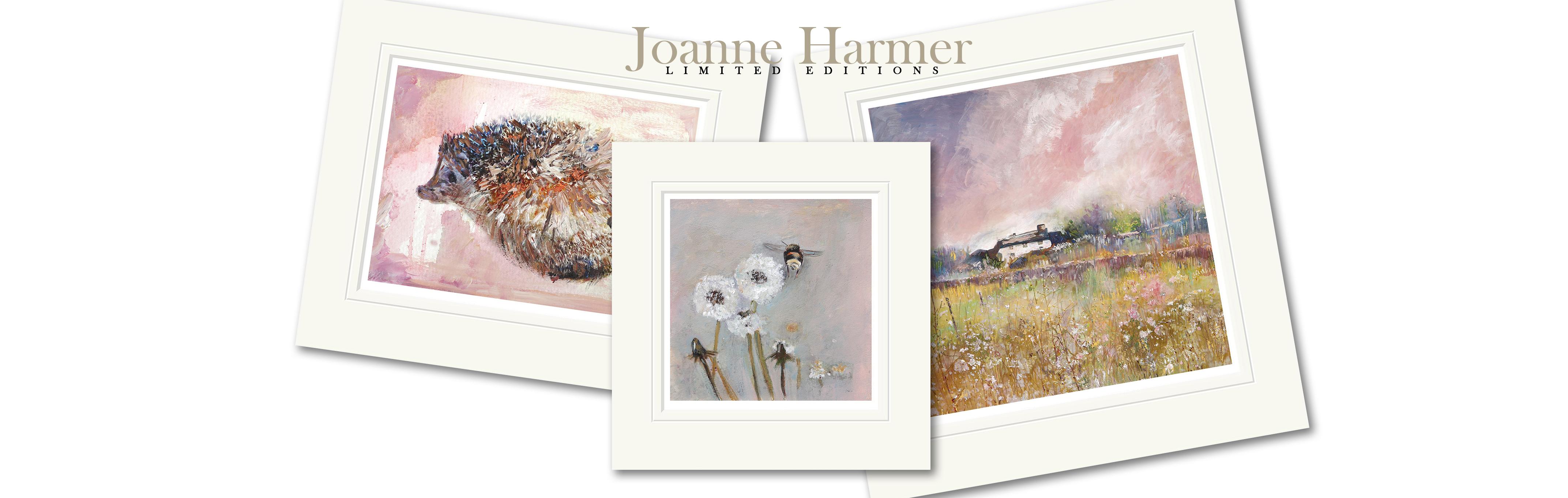 joanne_harmer_layout_1