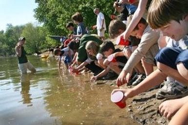 kids sustainability experiement education