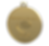 employee of the year medal.png