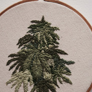 Kush Embroidery