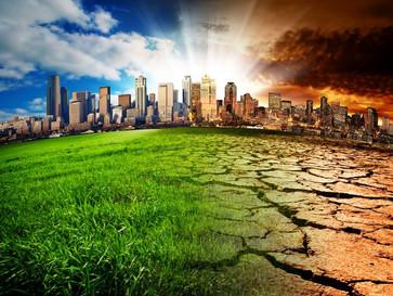 Поздравляем с Днем Эколога и Международным Днем окружающей среды!