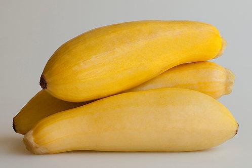 FL Small Yellow Squash /pound