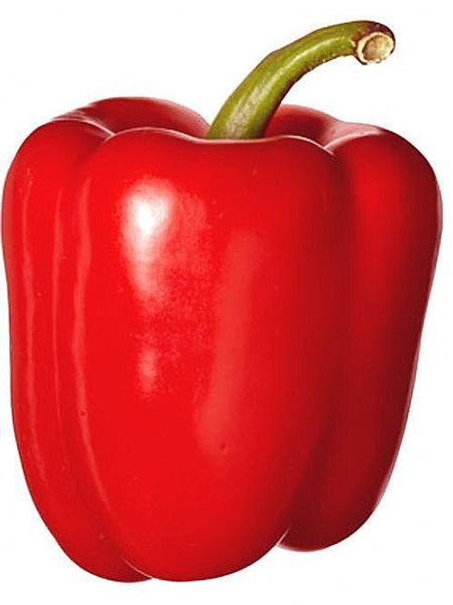 FL/GA Red Bell Peppers /each