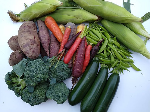 Vegetable Bundle