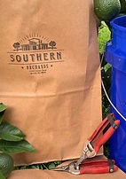 Southern Orchards Bag-1.jpg