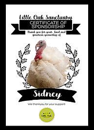 Sponsorship_Sidney.jpg
