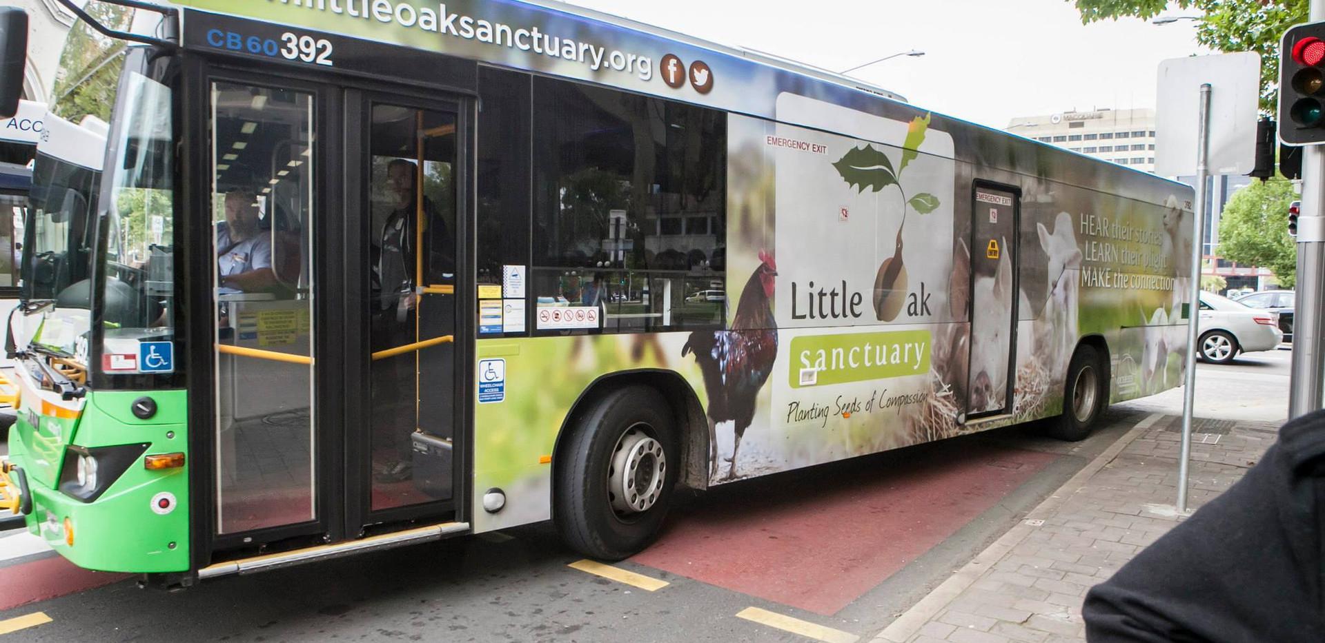 Bus01.jpg