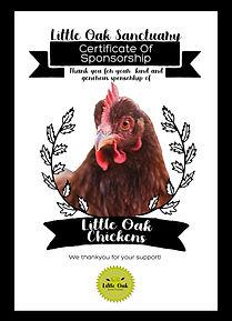 SponsorshipCertificate_Chickens2.jpg