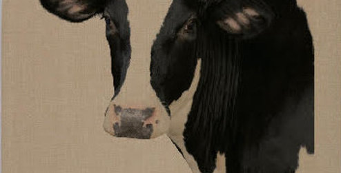 Teatowel - Cow - Natural