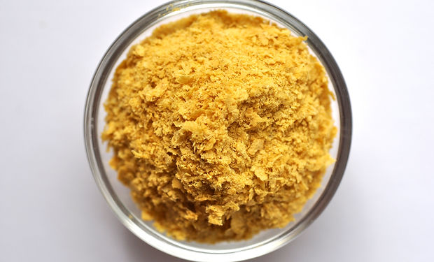 Nutritional yeast in a bowl close-up on