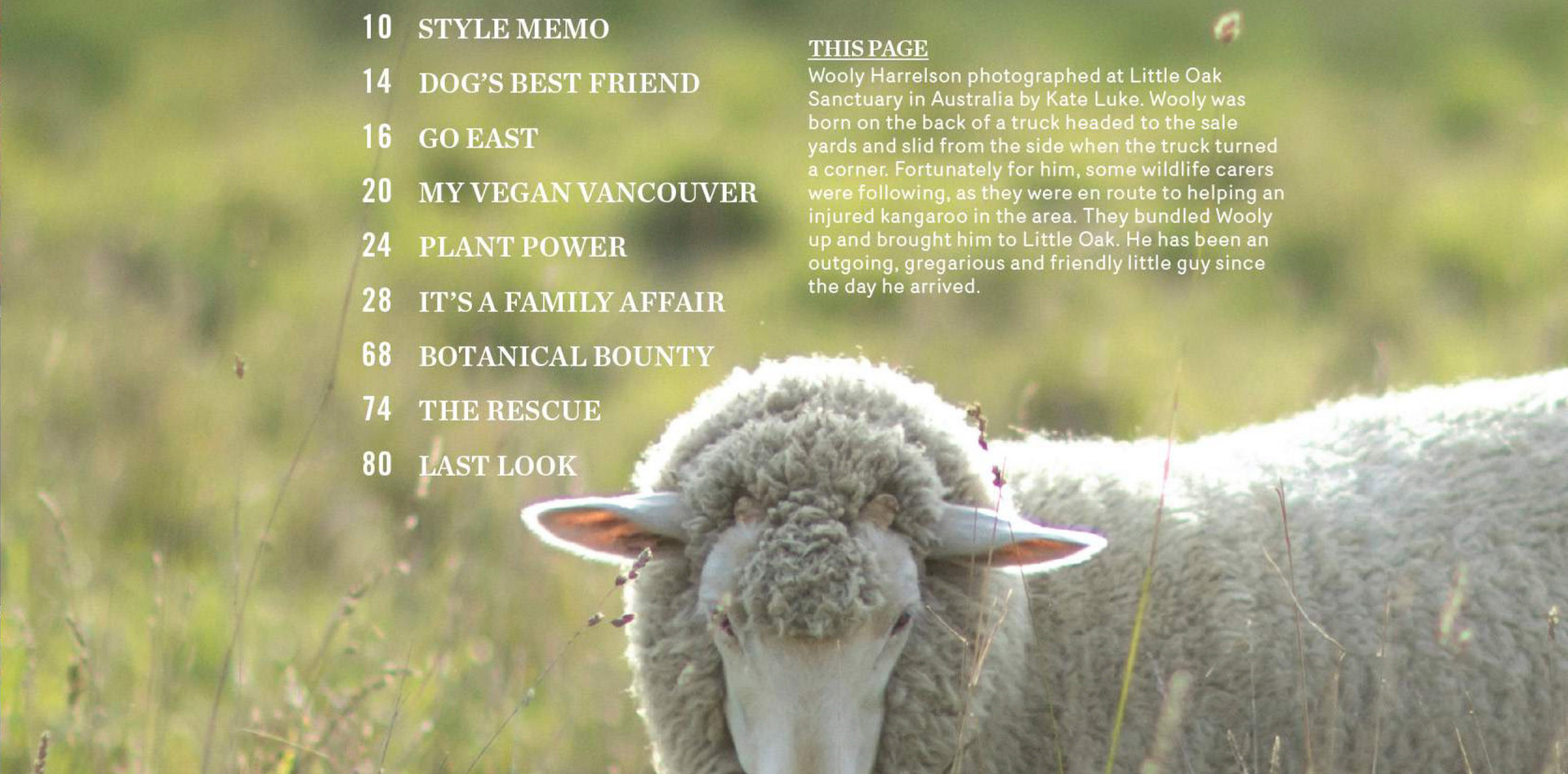 LAIKA Magazine Issue Six-2-LR.jpg