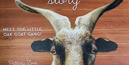 Audrey Horne's Story - Booklet