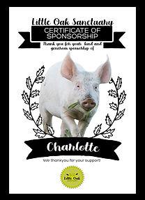 SponsorshipCertificate_Charlotte.jpg