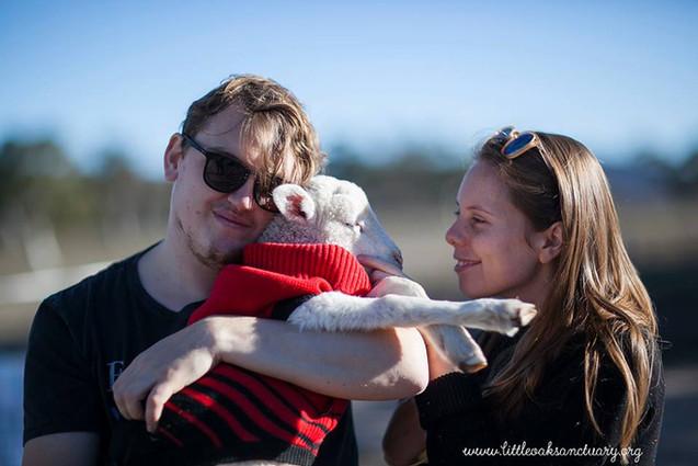 Sydney Volunteers with rescue lamb
