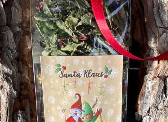 Santa Klaus busta
