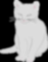 חתול מאויר