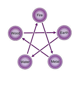 Elemental Pet Vets 5 Elements.jpg