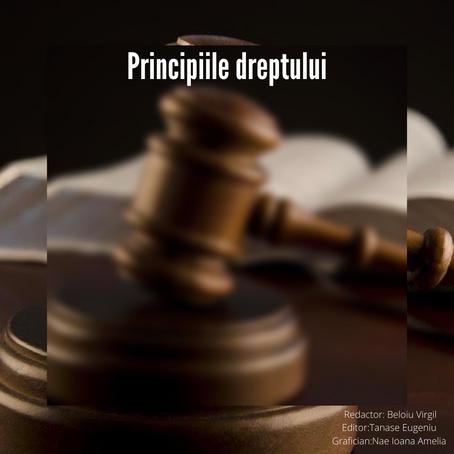 Principiile dreptului