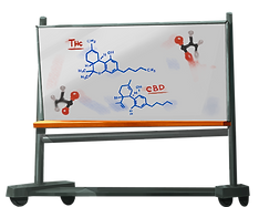 whiteboard_thc_cbd.png