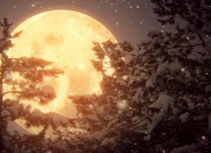 Insisto con la Luna