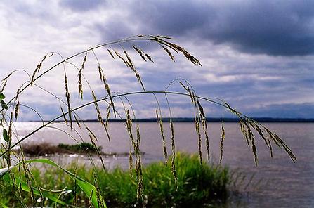 el majestuoso Río Paraná