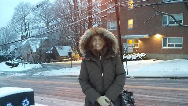 Framingham State University, campus nevado