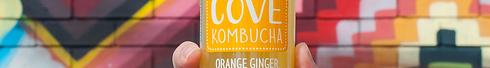 Orange Ginger 2.png