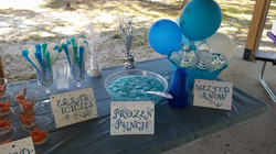 Frozen Theme Kids Birthday