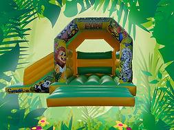 jungle slide.jpg