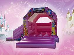 princess slide.jpg