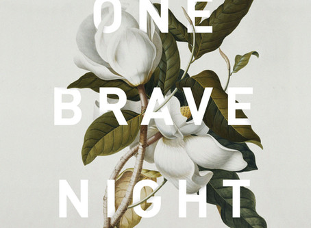 One Brave Night