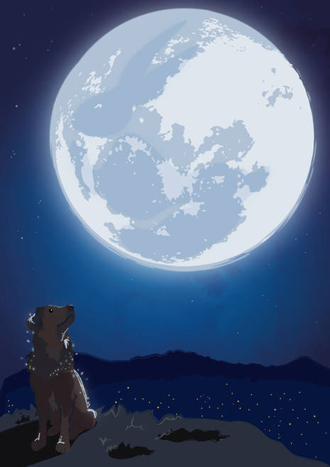 DOROTEO AND THE RABBIT ON THE MOON