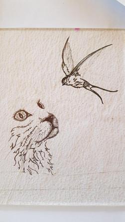Dreaming sketch.jpg