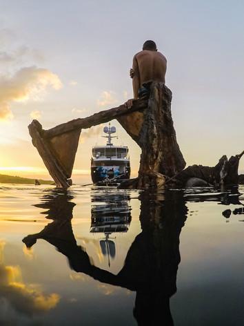 Dardanella Papua New Guinea
