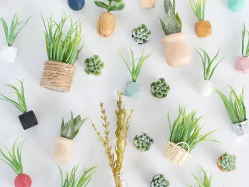 Plant Tutorial