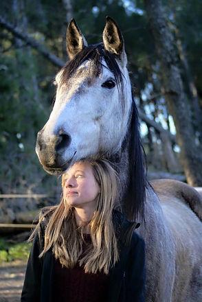 ado cheval.jpg