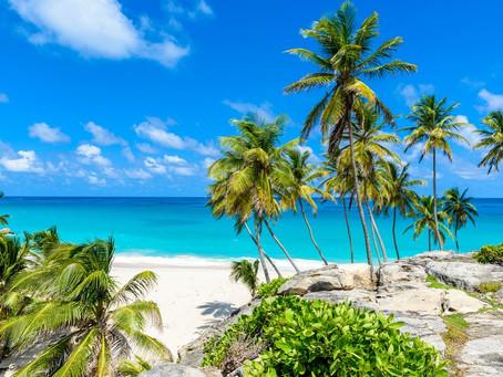 My Caribbean: Jalisa Sealy