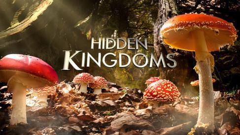 Hidden-Kingdoms-Mushrooms-960x540.jpg