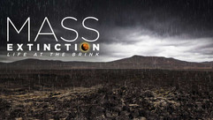 Mass Extinction of the Brink.jpg
