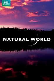 Natural World.jpeg