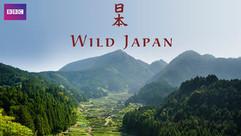 Wild Japan.jpg
